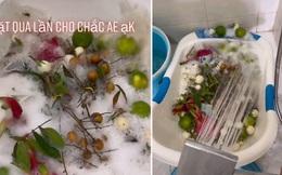 Chàng trai đổ cả xà phòng vào rửa trái cây: Dân mạng xem xong cũng chỉ biết 'cạn lời'