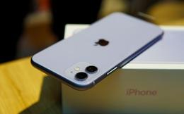 """iPhone 11 giảm giá thấp chưa từng thấy, loạt tablet, màn hình máy tính """"bay"""" vài triệu"""