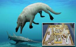 Phát hiện cá voi có 4 chân từng là động vật ăn thịt hàng đầu trong quá khứ