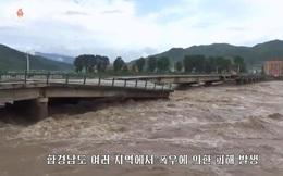 Hơn 1.100 ngôi nhà bị ngập, hàng nghìn người phải sơ tán vì lũ lụt ở Triều Tiên