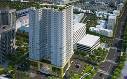 Hơn 93 triệu cổ phiếu của công ty BĐS liên quan Tân Hoàng Minh sẽ chào sàn UPCoM với giá tham chiếu 5.700 đồng