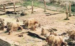 Giải mã lời nguyền 'quốc bảo' trâu sắt đúc 1200 năm trước trồi lên từ dưới lòng sông