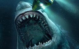 Đi biển 2 lần đều nhặt được viên đá hình tam giác, cô bé khiến các chuyên gia kinh ngạc: Là 'quái vật' số 1 của đại dương!