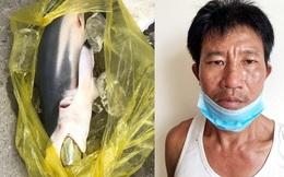 Con nghiện nhồi ma túy vào bụng cá