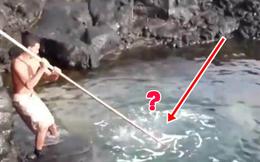 Người đàn ông bất thình lình cầm gậy chọc liên tục xuống biển, khi kéo lên tất cả đều trố mắt với thứ mắc vào