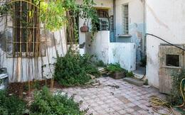 Biến nhà hoang thành nơi nghỉ dưỡng sang chảnh nhờ tường khung thép