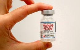 So sánh 3 vaccine COVID-19, phát hiện vaccine Moderna đứng đầu về ngăn ngừa nhập viện