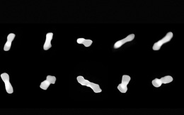 """Phát hiện tiểu hành tinh kỳ lạ có hình dạng """"xương chó"""""""