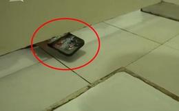 Đang đi vệ sinh, nữ y tá thấy 1 chiếc điện thoại thò vào, choáng váng khi biết danh tính chủ nhân