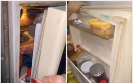 Dùng tủ lạnh mười mấy năm chưa thay, cô vợ ngỏ ý mua cái mới liền bị anh chồng bác bỏ ngay vì một lý do