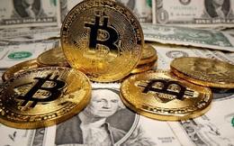 Một 'cá mập' vừa chuyển 2 tỷ USD bằng Bitcoin với mức phí chỉ 0,78 USD
