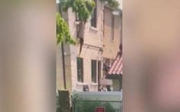Video: Bị chồng cầm súng đuổi bắn, nữ cảnh sát Mỹ phải nhảy khỏi tầng 2