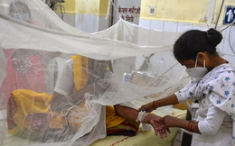 """Đã xác định chân tướng """"virus bí ẩn"""" giết chết hàng chục trẻ em ở Ấn Độ: """"Hung thủ"""" không hề xa lạ"""