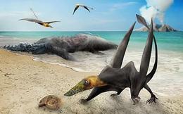 """Sinh vật chưa từng thấy trên thế giới """"hiện về"""" từ siêu lục địa tan vỡ"""