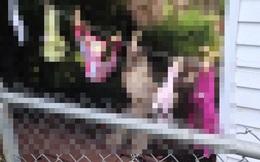Người phụ nữ kiện hàng xóm vì tội phơi nội y lộ liễu, nguyên cớ phía sau khiến cảnh sát sững sờ