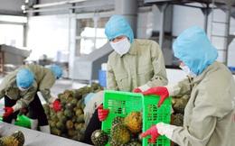 Kinh tế Việt Nam được dự báo tăng trưởng tích cực trong năm 2022