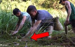Ra sức tát nước rồi vạch rêu, nhổ cỏ, nhóm đi rừng thu hoạch lớn ở vũng nước cạn