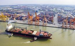 Sắp xây dựng thêm 2 bến container gần 6500 tỷ đồng ở Hải Phòng