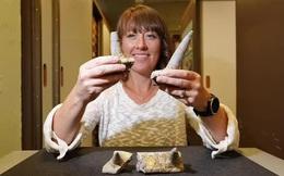"""Sừng """"hóa đá'' tiết lộ quái vật 168 triệu tuổi, chưa từng thấy trên thế giới"""