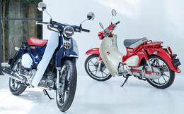 Huyền thoại xe số Honda Super Cub mở bán, giá bao nhiêu?