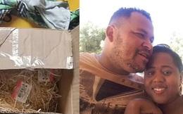 Nhận quà cưới của người yêu cũ, chú rể mang về ăn rồi cả nhà cùng ngộ độc, chó cưng mất mạng vì âm mưu thâm hiểm
