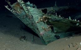 Những bí ẩn rùng rợn nhất dưới lòng đại dương