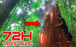 Thử thách sinh tồn 72 tiếng trong rừng, nhóm đi rừng hun khói gốc cây mục: Có gì bên trong?