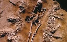 """Ngôi mộ được """"rồng và hổ"""" canh giữ suốt ngàn năm, chuyên gia kinh ngạc: Chủ mộ không hề tầm thường!"""