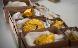 Dò kim loại, phát hiện kho báu đầy vàng lớn nhất đất nước