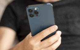 iPhone 12 Pro Max giảm giá tiền triệu, điện thoại giá rẻ sập sàn còn 2,5 triệu