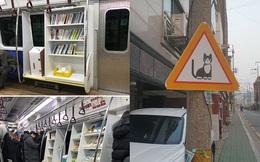 Những điều thú vị ở Hàn Quốc khiến nhiều người kinh ngạc