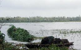 Phú Yên: Lật ghe giữa sông Ba, 2 phụ nữ mất tích