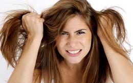 8 cách cứu vãn tóc hư tổn
