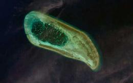 Ảnh vệ tinh rất đẹp về 'bãi cát vàng' Hoàng Sa