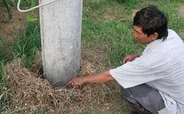 Bình Thuận: Tiếng nước sôi sùng sục phát ra từ lòng đất