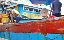 Tàu cá Việt từ Hoàng Sa về bị đâm tơi tả