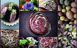 Lợi ích sức khỏe của thực phẩm màu tím