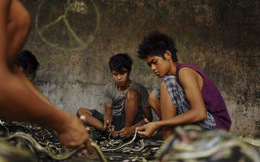 Rợn tóc gáy thăm quan lò giết mổ rắn ở Indonesia