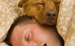 Tư thế ngủ nói lên điều gì?