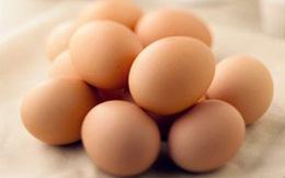 Viêm gan B có nên ăn trứng?