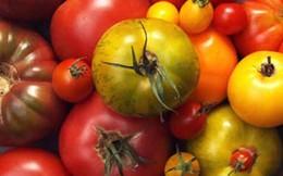 5 thực phẩm bổ dưỡng bạn nên ăn thường xuyên