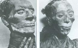 """Phát hiện thức ăn """"kinh dị"""" của xác ướp Ai Cập"""