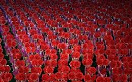"""Triều Tiên đỏ rực hoa Kim Nhật Thành, Kim Chính Nhật trong """"Ngày chiến thắng"""""""