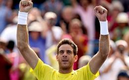 Chiến thắng dễ dàng, Del Potro vững bước lên ngôi tại Citi Open