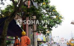 Hà Nội: Nổ trạm điện cao thế, cả khu phố mất điện