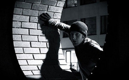 Những tên trộm vặt khét tiếng nhất thế kỷ 20