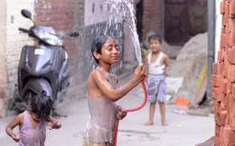 Ấn Độ vật vã trong nắng nóng, 524 người chết