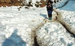 Rét đậm, sương muối tiếp tục dội xuống miền Bắc