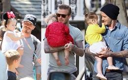 Harper Seven và những hình ảnh cực cute bên bố Becks