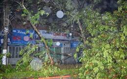 Quảng Ninh: 3 người mất tích, thiệt hại khoảng 100 tỷ đồng
